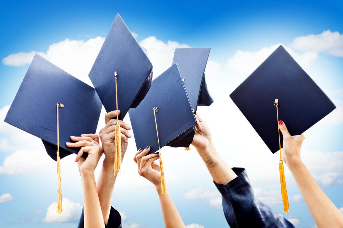 Бакалавриат – это полное высшее образование или нет?